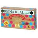REINA REAL infantil 20amp.ROBIS
